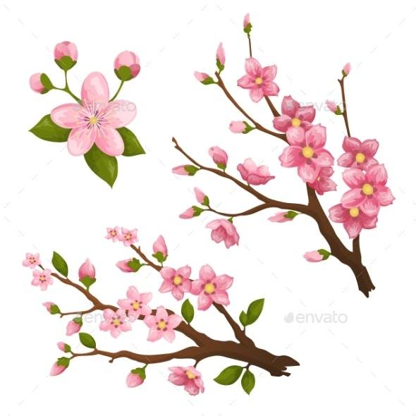 Sakura. Beautiful Print with Blossoming Dark and