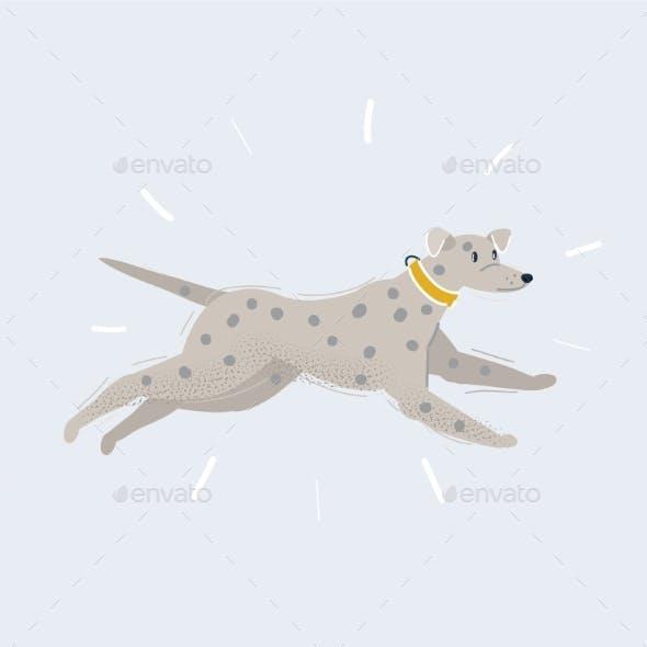 Vector Illustration of Running Dalmatian on White