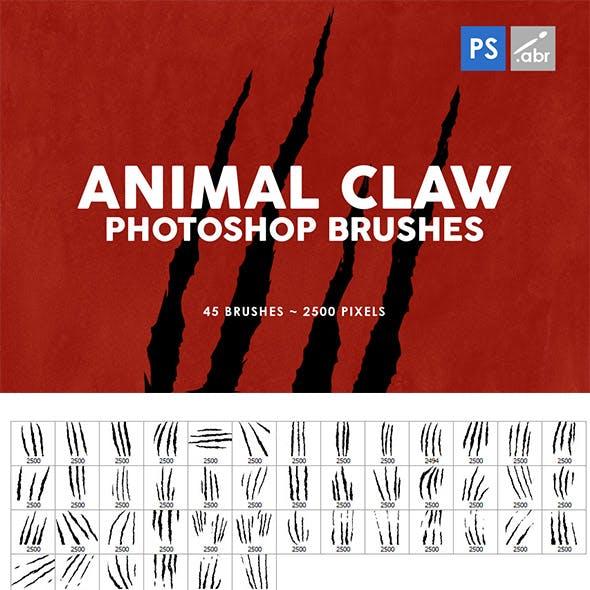 Animal Claw Photoshop Stamp Brushes