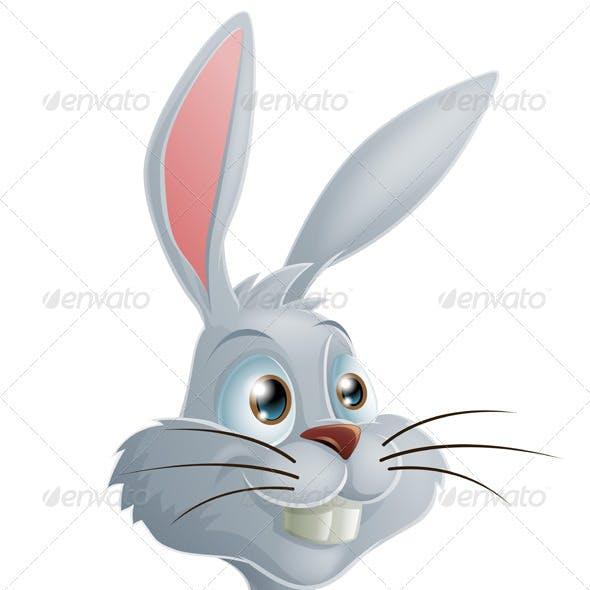 White rabbit cartoon character