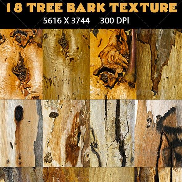 18 Tree Bark Texture