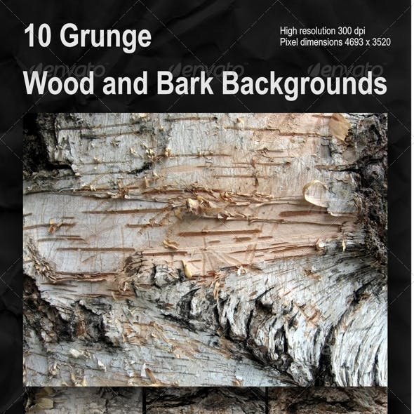Set of 10 Grunge Wood and Bark Backgrounds Pack 1