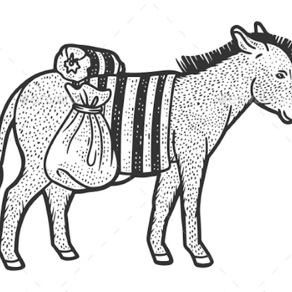 Donkey Carrying Heavy Loads