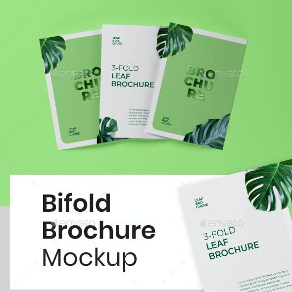 Photorealistic Bifold Brochure Mock-up