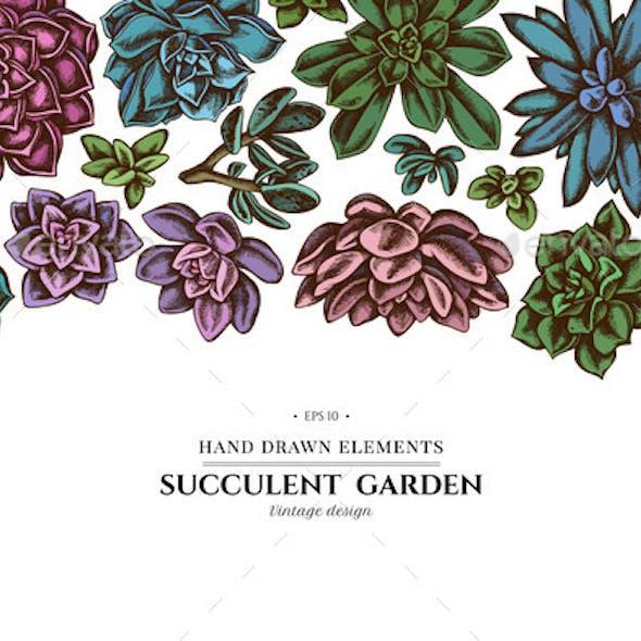 Floral Design with Colored Succulent Echeveria