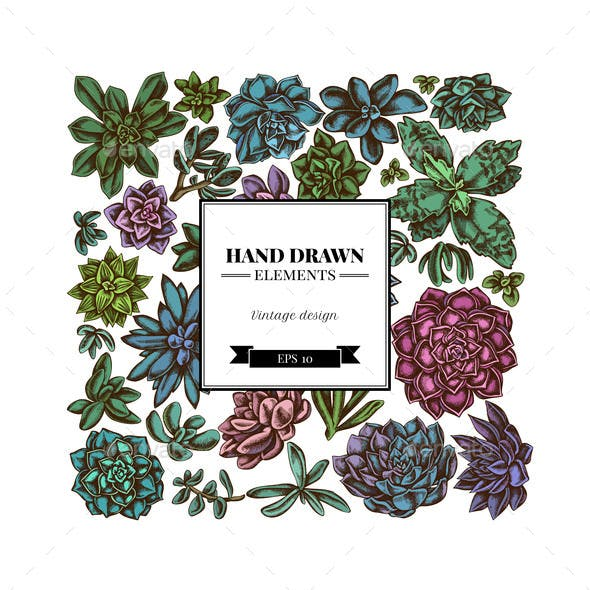 Square Floral Design with Colored Succulent