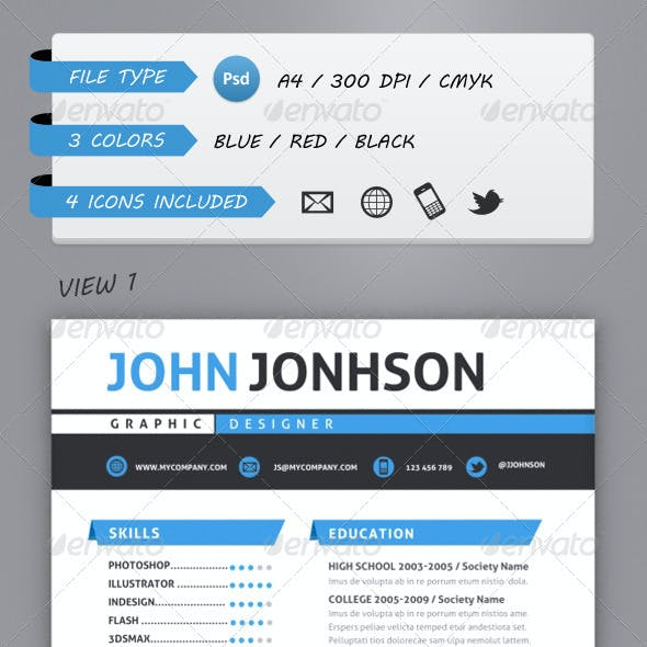 Professional Resume Template A4