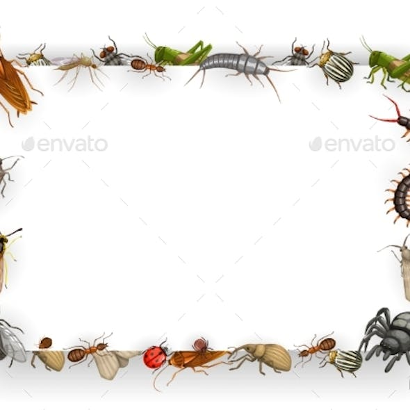 Frame with Insects Cartoon Vector Parasites Border