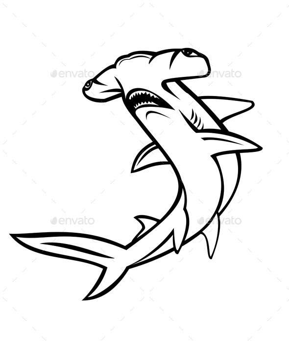 Scalloped Hammerhead Shark or Sphyrna Lewini Swimming Up Mascot and White - Animals Characters