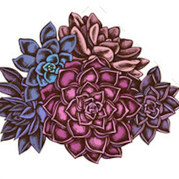 Flower Bouquet of Colored Succulent Echeveria