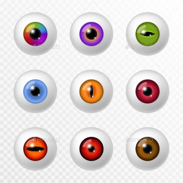 Human and Animal Eye. Different Color Eyeball and