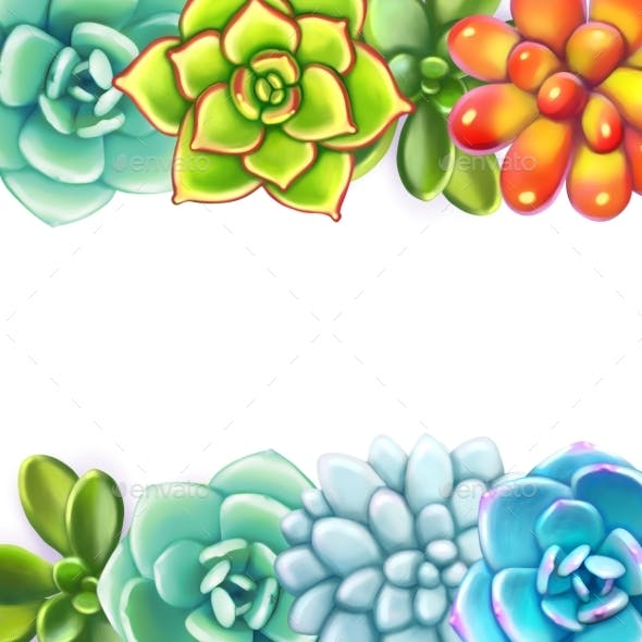 Floral Border. Succulents Arranged Un a Shape of