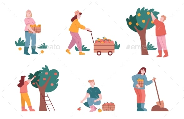 Man and Woman Characters Harvest Fruits in Farm - People Characters