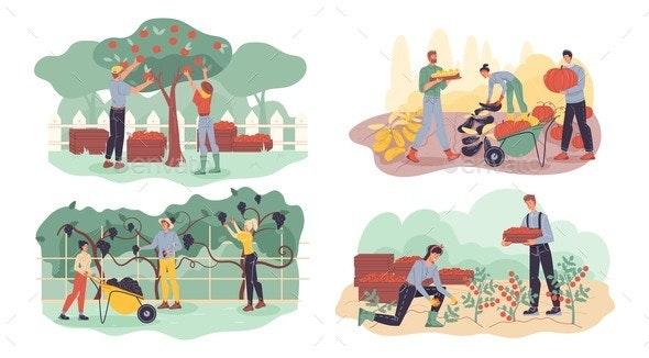 Farmer Gathering Fruit, Berry, Veggie Harvest Set - Food Objects