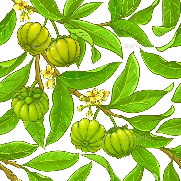 Garcinia Branches Vector Pattern - Food Objects