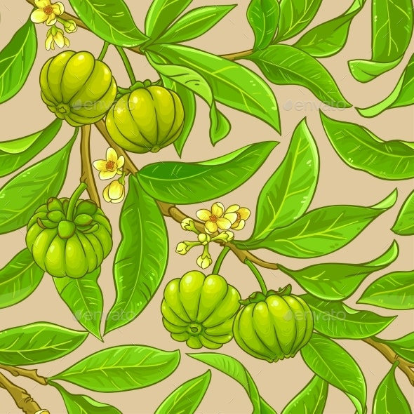 Garcinia Branches Vector Pattern - Nature Conceptual