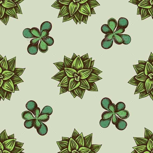 Seamless Pattern with Hand Drawn Colored Succulent