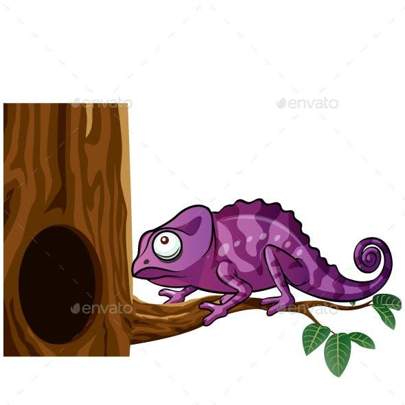Chameleon On Tree Cartoon