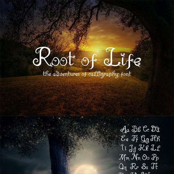 Root Of Life