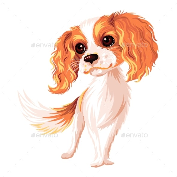Vector Dog Cavalier King Charles Spaniel - Animals Characters