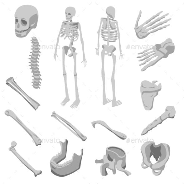 Skeleton Icons Set, Isometric Style
