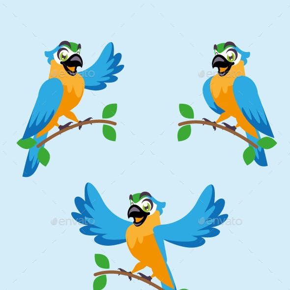 macaw parrot cartoon character cute