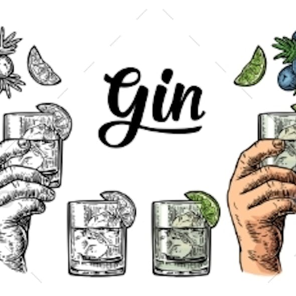 Glass and Bottle Gin and Juniper