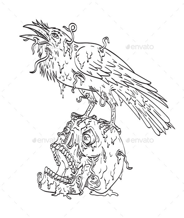 Raven Perching on Top of Human Skull - Animals Characters