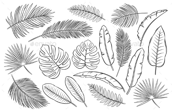 Set Of Black And White Tropical Leaves By Setory Graphicriver Download the above leaf outline tropical pattern image and use it as your wallpaper, poster and banner design. https graphicriver net item set of black and white tropical leaves 29272069