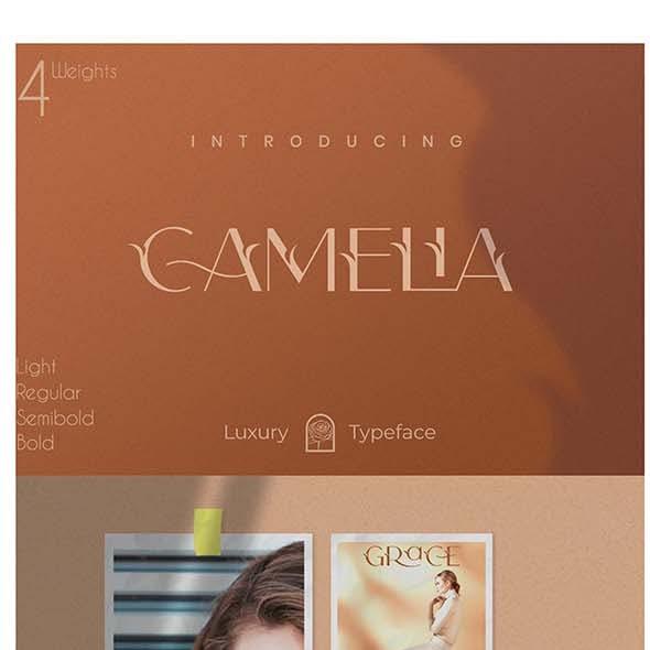 Camelia Sans - Unique Typeface