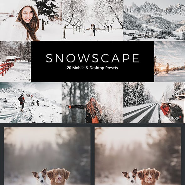 20 Snowscape Lightroom Presets & LUTs