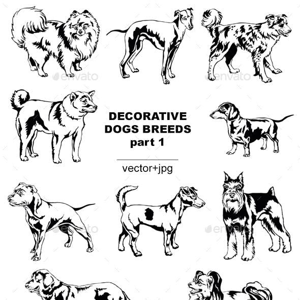 Decorative Dogs Breeds 1