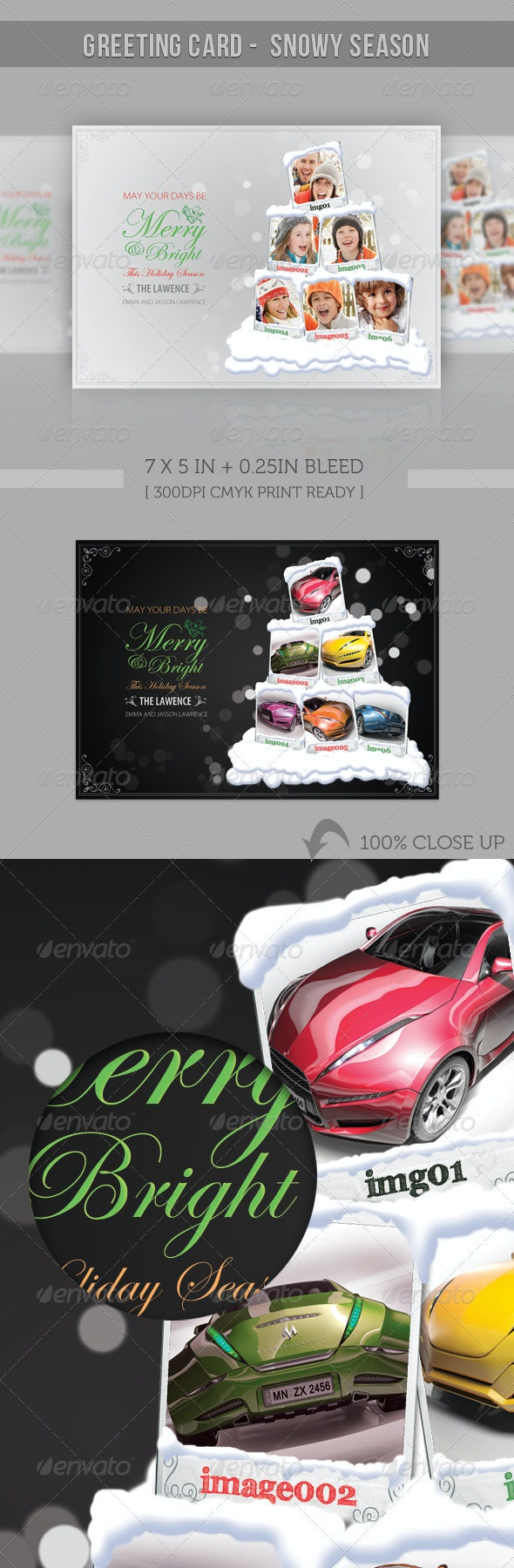 Happy Holiday/ Merry Christmas - Snowy Greeting - Holiday Greeting Cards