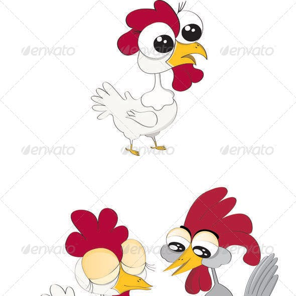 Chicken, Chicks and Rooster Illustrations