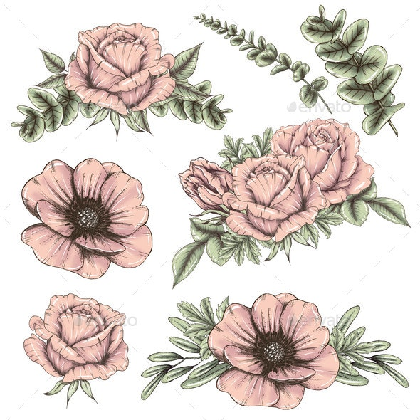Pink Rose and Poppy Bouquets - Objects Illustrations