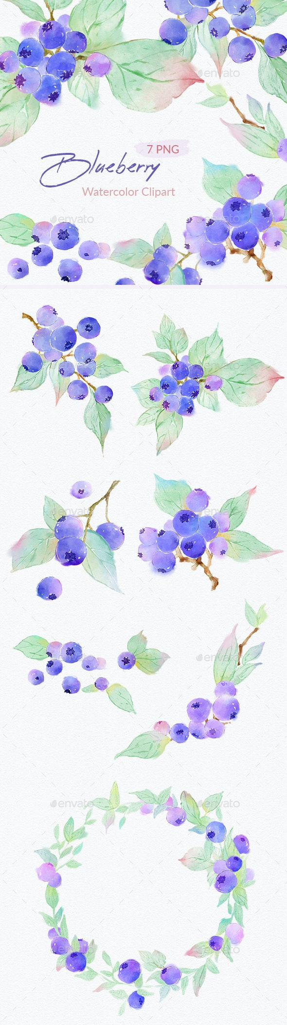 Blueberry Watercolor Illustrations Clipart - Graphics
