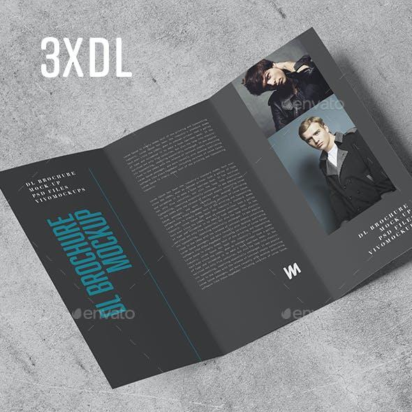 Tri-Fold DL Brochure Mock-up