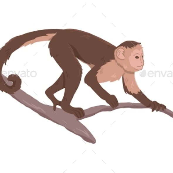 Icon of Monkey on Tree Branch