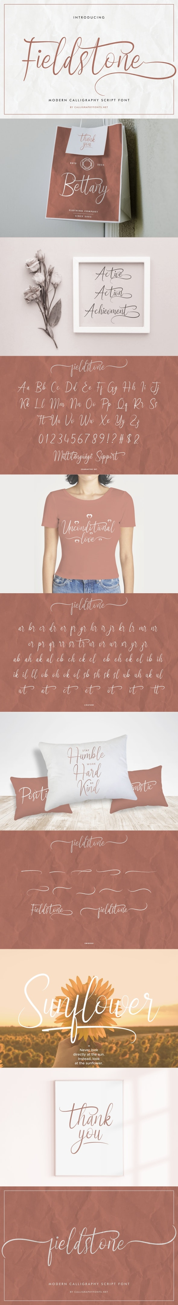 Fieldstone Brush Calligraphy Font. - Script Fonts