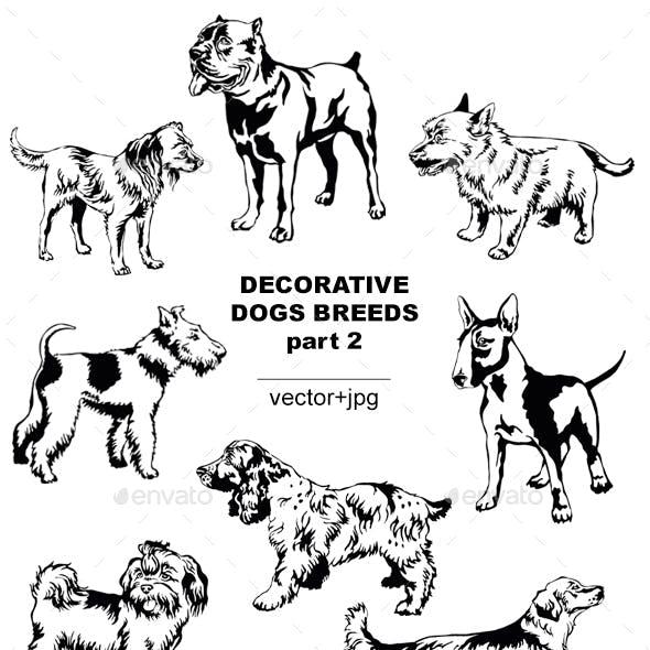 Decorative Dogs Breeds 2