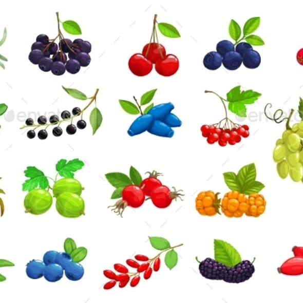 Cartoon Ripe Berries Vector Isolated Icons Set