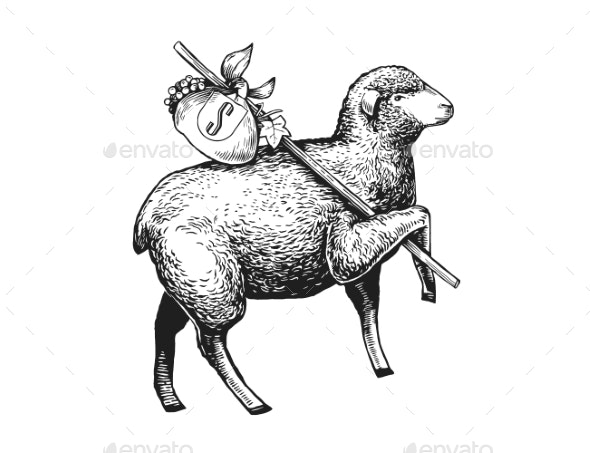 Illustration of the Sheep - Animals Characters