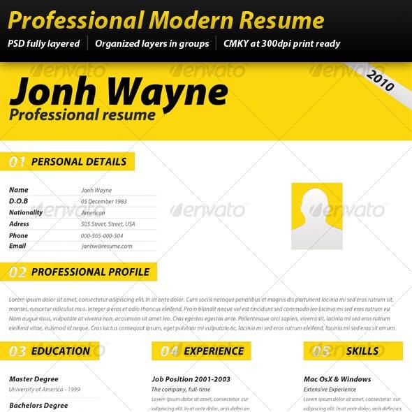 Professional Modern Resume