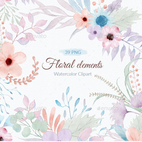 Floral Watercolor Illustrations Clipart PNG
