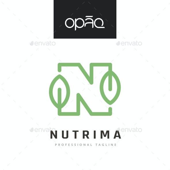 N Letter Nature Nutriment Logo