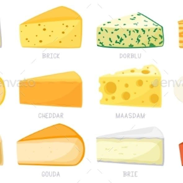 Cartoon Cheese Types