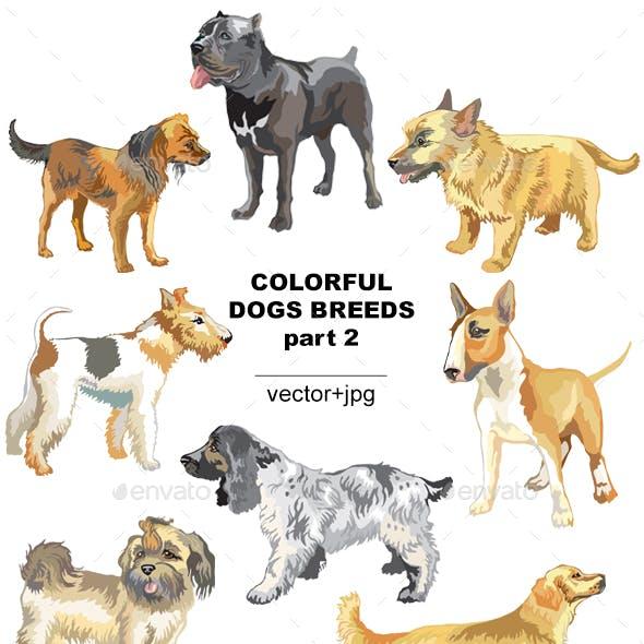 Colorful Dog Breeds 2
