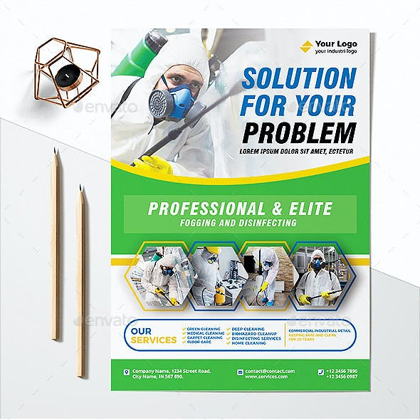 Professional Disinfecting and Cleaning Services Flyer