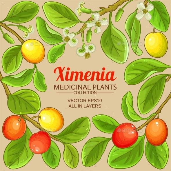 Ximenia Vector Frame - Food Objects