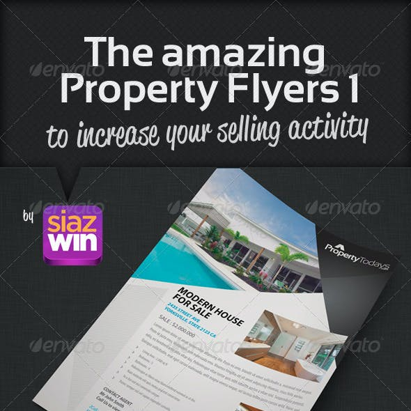 The Property Flyers 1